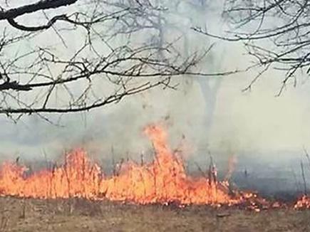 fire hills 2017420 12452 20 04 2017