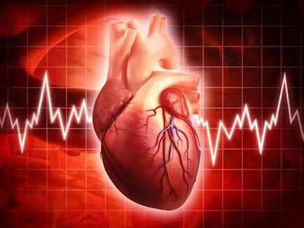 heart beat 12 08 2017