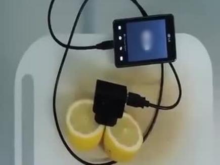 lemon charger11 30 04 2016