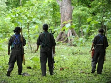 naxalite forest 15 05 2017