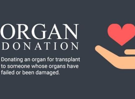 organ donation 13 08 2017