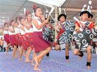 आदिवासी महोत्सव में छत्तीसगढ़ की लोक-संस्कृति की बिखरी छंटा
