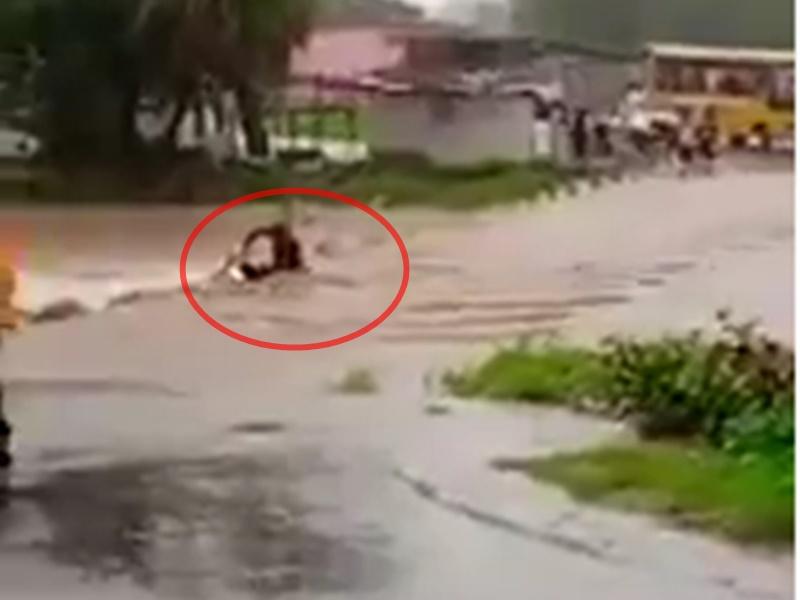 LIVE VIDEO : उफनता नाला पार कर रहा था बाइक सवार, बहा ले गया पानी