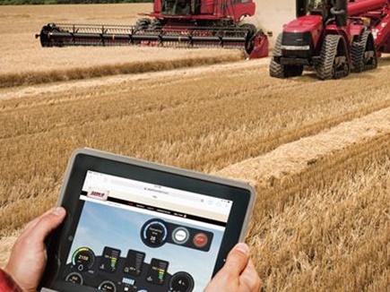 कमाल है...यूट्यूब से सीखी खेती, व्हाट्सऐप पर पाया बाजार