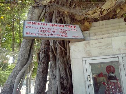 Prayag Kumbh: प्रमुख पर्व स्नान पर नहीं होंगे अक्षयवट के दर्शन