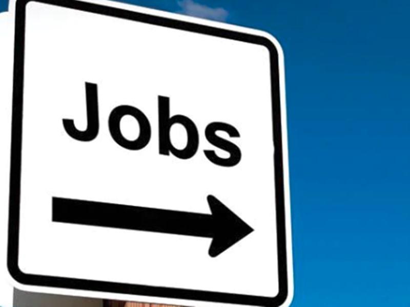 APSC Recruitment 2019: ग्रेजुएट्स के लिए यहां निकली 73 वैकेंसी, मिल सकती है 87 हजार सैलरी