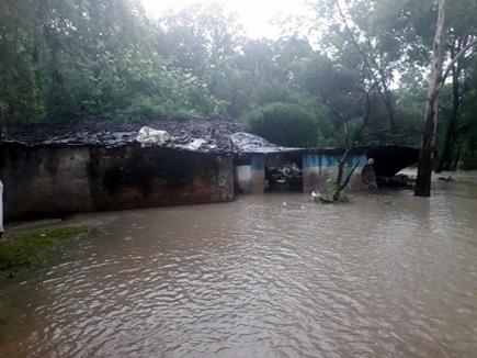 अशोकनगर जिले में 18 साल बाद मूसलधार बारिश, कई गांव डूबे