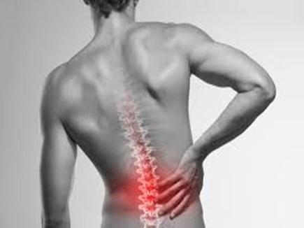 Back Pain : कभी नहीं होगा कमर दर्द, अगर रोज 20 बार करें ये काम