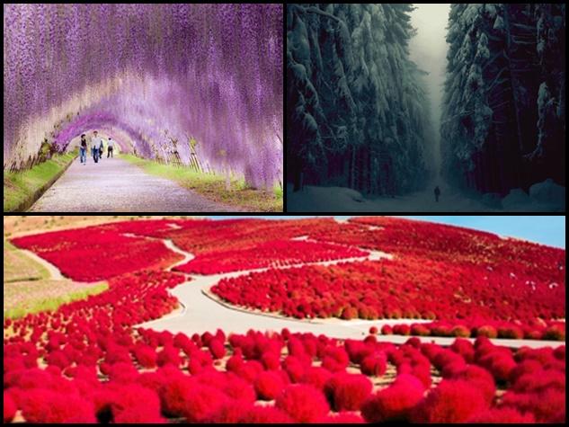 दुनिया के 15 सबसे खूबसूरत रास्ते जिन पर सफर जन्नत जैसा