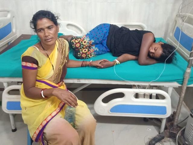 Jashpur : मधुमक्खी के हमले में एक ही परिवार के चार लोग घायल, दो गंभीर