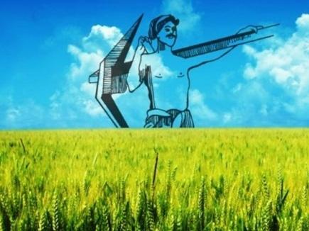 रबी फसलों के लिए भावांतर भुगतान पंजीयन 12 फरवरी से