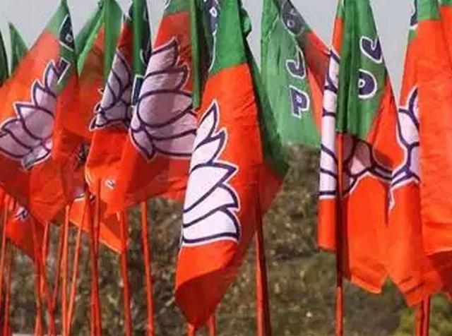 BJP Loksabha Candidates List: MP की इन तीन सीटों के लिए प्रत्याशी घोषित, जानिए किसे मिला मौका