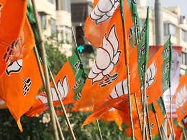 Lok Sabha Elections 2019 : उम्मीदवारों के नाम पर BJP के दिग्गजों ने किया मंथन