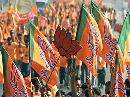 जम्मू-कश्मीर BJP की वेबसाइट हैक, लिखा 'कठुआ के आरोपितों को फांसी दो'