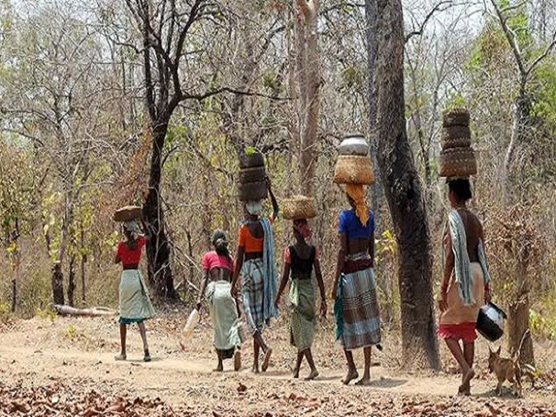 छत्तीसगढ़ में वनों से बेदखली के खिलाफ आदिवासियों को सीएम हाउस तक कल मार्च