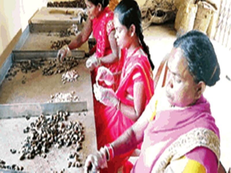 महिलाओं ने बालेंगा को बना दिया कुटीर उद्योग का हब, देखें वीडियो