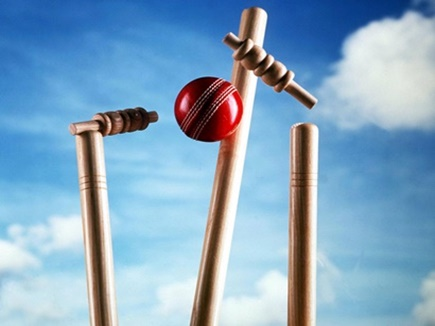 अमित के शतक पर भारी पड़ा पार्थ का अर्द्धशतक, मप्र 4 विकेट से जीता