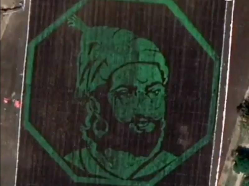 VIDEO: क्रॉप आर्ट के जरिये किसान ने बनाई शिवाजी की तस्वीर, गूगल मैप्स से भी आती है नजर
