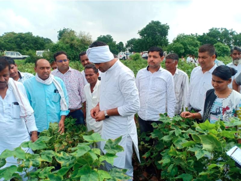 Flood Havoc In Madhya Pradesh : 22 लाख किसानों की 24 लाख हेक्टेयर फसल चौपट