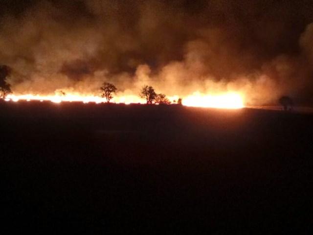 Seoni News: देर रात भड़की आग, सैकड़ों एकड़ में लगी फसल खाक, देखें VIDEO
