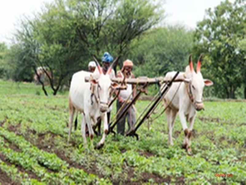 मध्यप्रदेश में आदिवासी किसानों के नाम पर 100 करोड़ की गड़बड़ी, अब होगी जांच