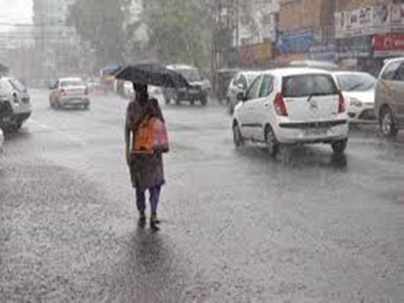 Weather Alert : मध्यप्रदेश में सक्रिय कम दबाव का क्षेत्र, 48 घंटे में तेज बौछारों के आसार