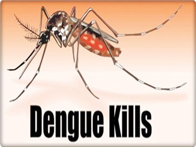 बारिश में बढ़ा डेंगू का खतरा, 35 घंटे में मिले 42 संदिग्ध मरीज