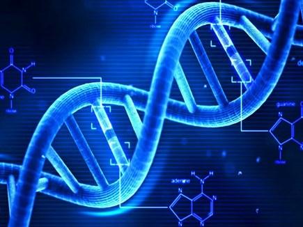 अपने पूर्वजों की मिल सकेगी जानकारी, DNA उपकरण लगाएगा पता