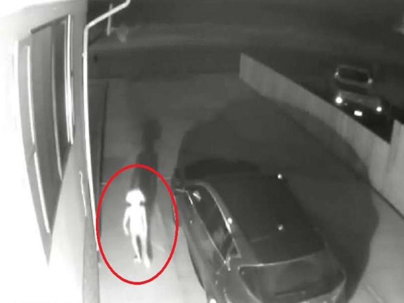 CCTV में कैद हुआ ये अजीब सा प्राणी, तेजी से Viral हो रहा है Video