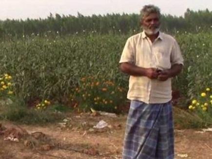आंध्र प्रदेश में इस किसान की फसल को बुरी नजर से बचा रही सनी लियोनी