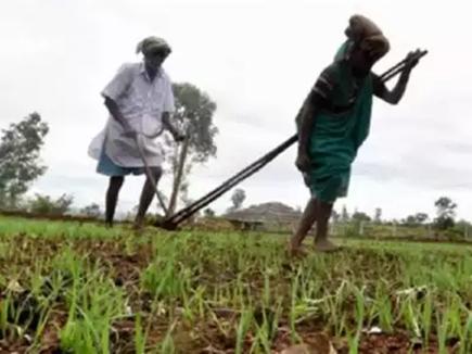 1.17 लाख माफी का प्रमाण-पत्र मिला, किसान बोला कर्ज तो 56 हजार लिया