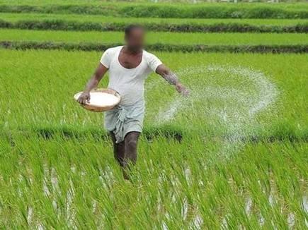 अगस्त में दो लाख किसानों को मिलेंगे प्रोत्साहन राशि के 775 करोड़ रुपए