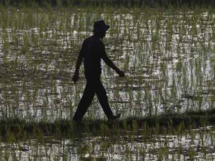 indian agriculture challenges Maharashtra and madhya pradesh are among the several largely agricultural indian states that  dw talks to wri's tien shiao on india's water challenges.