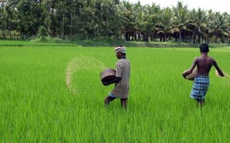 स्वतंत्रता दिवस पर किसानों को सौगात, IFFCO ने घटाया खादों का दाम, नई दरें लागू