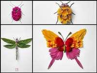 इन 'कीड़ों' को देखकर आपको भी हो जाएगा इनसे प्यार