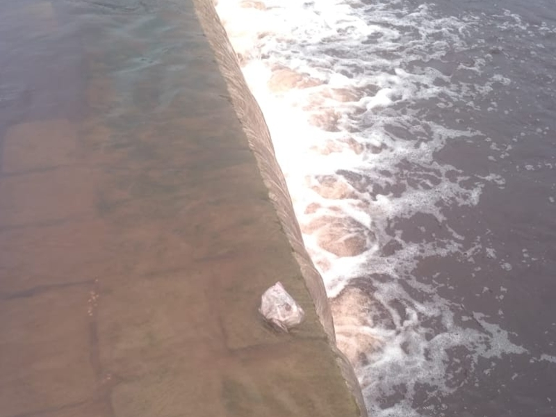 Madhya Pradesh : महू के पास लाल हुआ गंभीर नदी का पानी, मछलियों की मौत