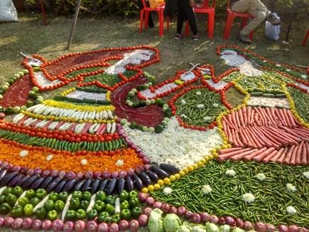 VIDEO: इस गार्डन में नजर आए 1486 किस्म के फल-फूल और सब्जियां