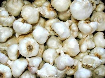 garlic 14 03 2018