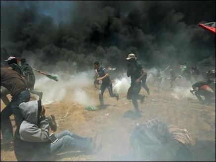 गाजा संघर्षः तीन और फिलिस्तीनियों ने तोड़ा दम, अब तक 65 की मौत