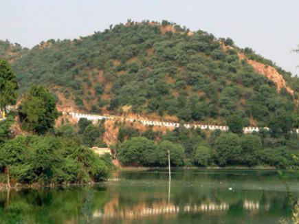 मथुरा : गोवर्धन पर्वत पर लहराएगी कृष्णयुगीन हरियाली