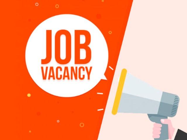 HCL Apprentice Trainee Recruitment 2019: 10वीं पास के लिए 112 वैकेंसी, आज है आवेदन की आखिरी तारीख