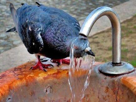 भीषण गर्मी : 45 डिग्री के पार पहुंचे मध्यप्रदेश के तीन शहर