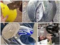 अगर हेलमेट पहनने से बचते हैं आप, तो ये तस्वीरें आपकी ये आदत बदल देगी