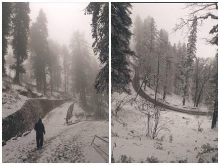 हिमाचल प्रदेश में भारी बारिश व बर्फबारी से जनजीवन अस्त-व्यस्त