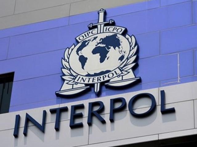 इंटरपोल ने जबलपुर पुलिस से मांगी मदद, जानिए क्या है पूरा मामला