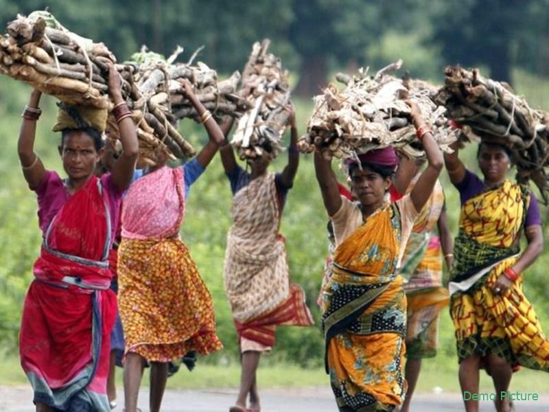 Jharkhand Assembly polls 2019: झारखंड में बिछने लगी चुनावी बिसात, आदिवासी समुदाय को साधने में जुटे राजनीतिक दल
