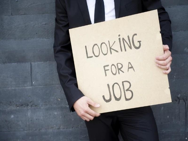 Chhattisgarh Job : कृषि विवि में 100 पदों पर भर्ती, ऐसे युवाओं के मिलेगा सुनहरा मौका