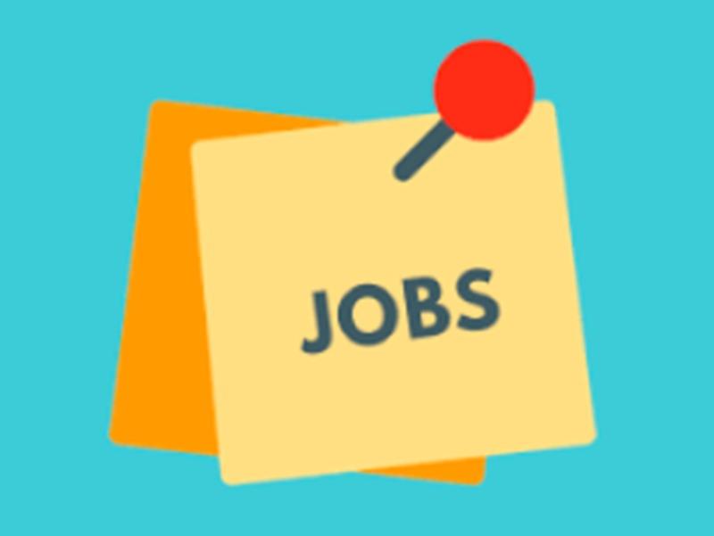 अगले 3 महीने में महज 19 प्रतिशत कंपनियां ही नए लोगों को देंगी नौकरी : सर्वे