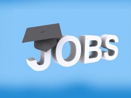 ग्रेजुएट्स के लिए सरकारी नौकरी, 500 पदों पर हो रही है भर्तियां