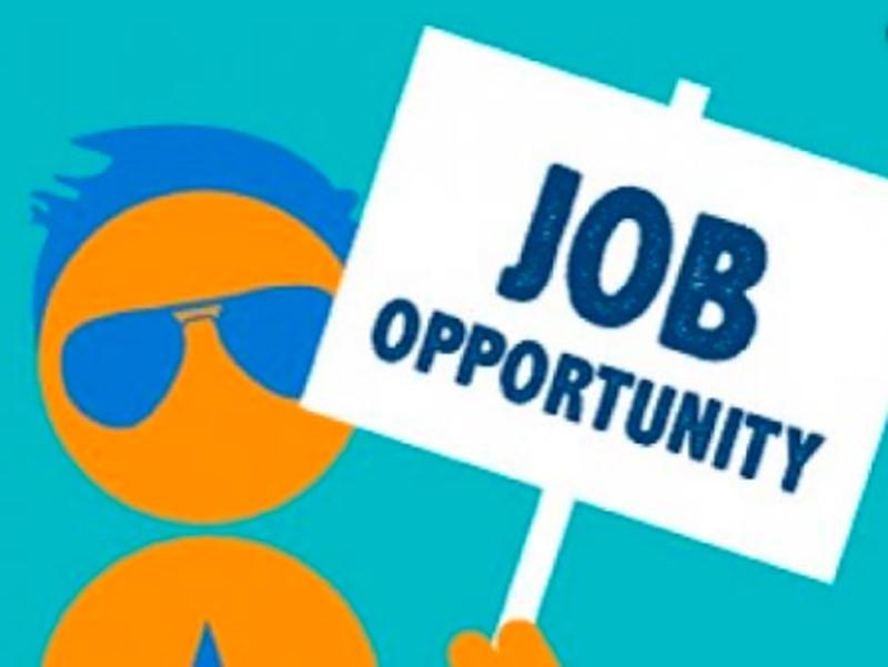 UPSRTC Samvida Parichalak recruitment 2019: 12वीं पास के लिए 358 वैकेंसी, जल्द करें आवेदन